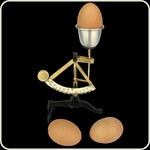 HG_02121_egg scale